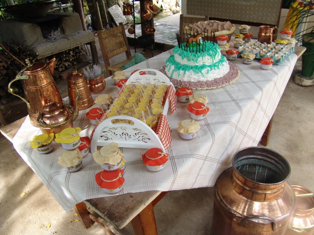 Festa Sertaneja, Country